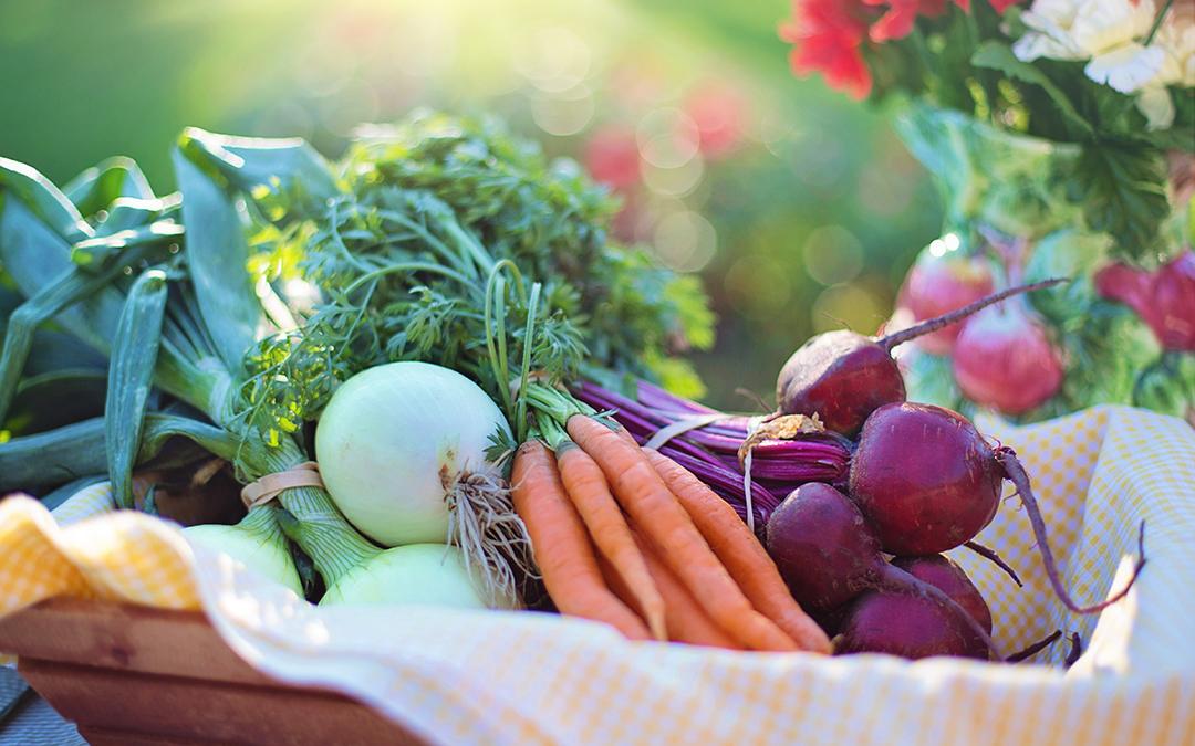 ¿Por qué preferir comer alimentos orgánicos?